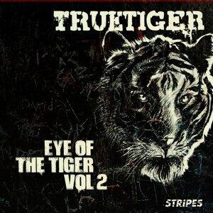 Eye of the Tiger, Vol. 2