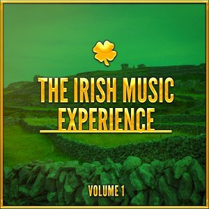 The Irish Music Experience, Vol. 1 (A Selection of Traditional Music from Ireland)