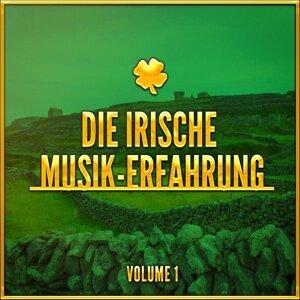 Die Irische Musik-Erfahrung, Vol. 1 (Eine Auswahl traditioneller Musik aus Irland)