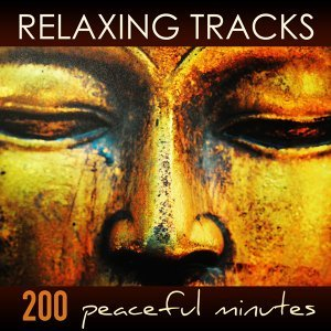 Relaxing Tracks - 200 Peaceful Minutes of Zen Relaxation Meditation Yoga Music with Sounds of Nature