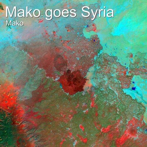 Mako Goes Syria