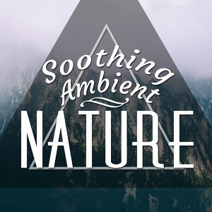 Soothing Ambient Nature