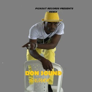Don Sound - Remix