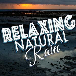Relaxing Natural Rain