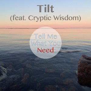 Tell Me What You Need (feat. Cryptic Wisdom)