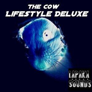 Lifestyle Deluxe