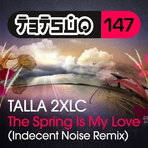 The Spring Is My Love - Indecent Noise Remix