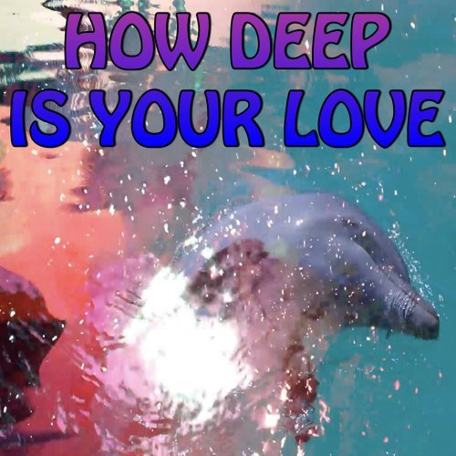 How Deep Is Your Love - Tribute to Calvin Harris and Disciples