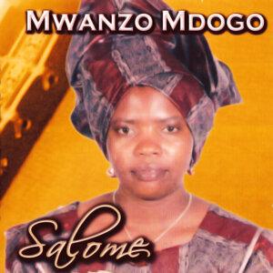 Mwanzo Mdogo