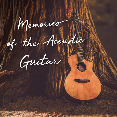 回憶時光.民謠吉他 (Memories of the Acoustic Guitar )
