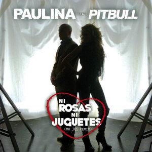 Ni Rosas, Ni Juguetes - Dúo Con Pitbull - Mr 305 Remix