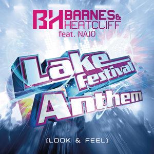 Lake Festival Anthem (Look & Feel)