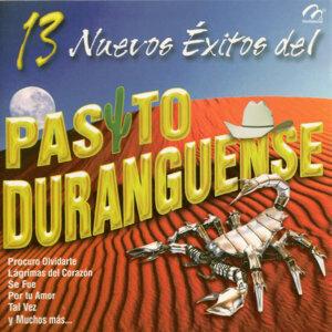 13 Nuevos Exitos del Pasito Duranguense