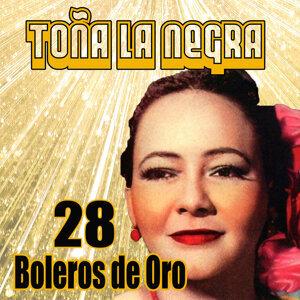 28 Boleros de Oro