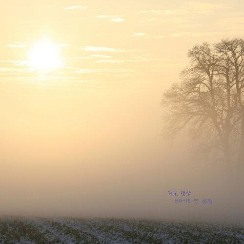 겨울 햇살