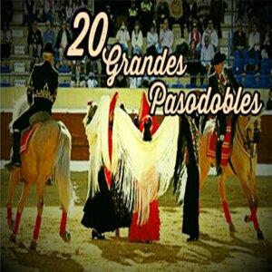 20 Grandes Pasodobles