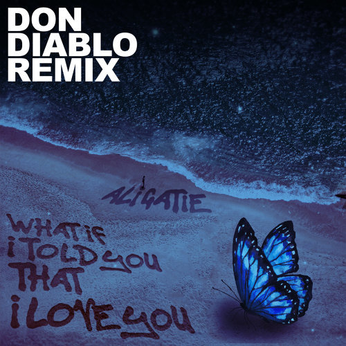 What If I Told You That I Love You - Don Diablo Remix