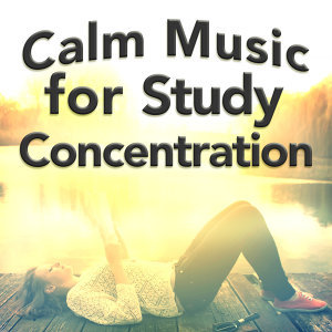 Calm Music for Study Concentration