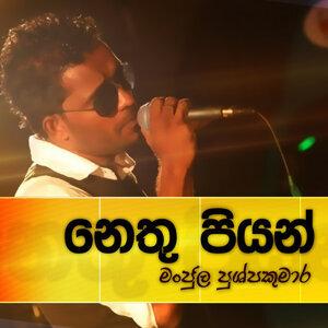 Nethu Piyan - Single