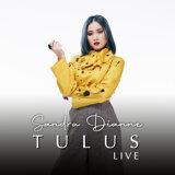 Tulus (Live Version)