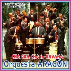 Cha Cha Cha In Havana