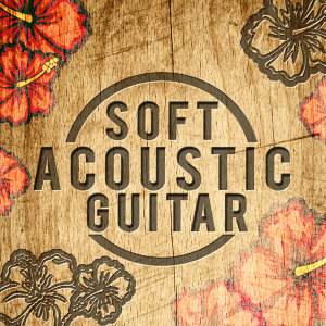 Soft Acoustic Guitar