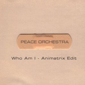 Who Am I (Animatrix Edit)
