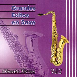 Grandes Exitos en Saxo, Vol. 2
