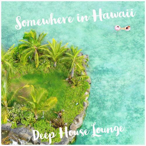 Somewhere in Hawaii