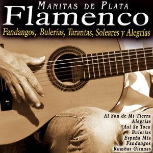 Flamenco: Fandangos, Bulerías, Tarantas, Soleares y Alegrías