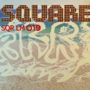 SQR LM 019