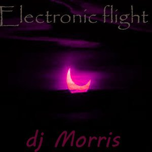 Electronic Flight
