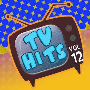 Tv Hits Vol. 12