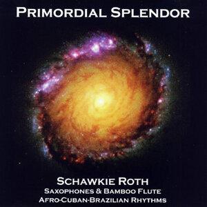 Primordial Splendor