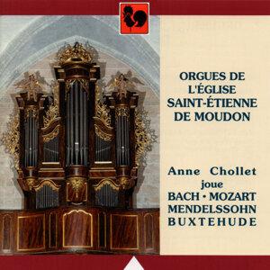 Bach - Mendelssohn - Mozart - Buxtehude: Orgues de l'Eglise Saint-Etienne de Moudon