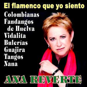 El Flamenco Que Yo Siento
