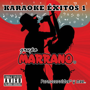 Karaoke Éxitos 1