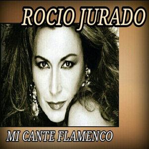 Mi Cante Flamenco