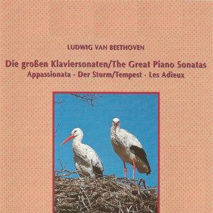 Ludwig van Beethoven - The Great Piano Sonatas
