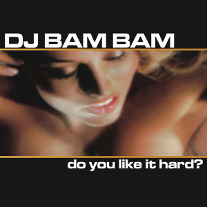 Do You Like It Hard? (Continuous DJ Mix by DJ Bam Bam)