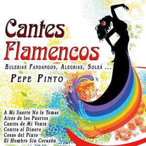 Cantes Flamencos: Bulerias Fandangos, Alegrias, Soleá ...