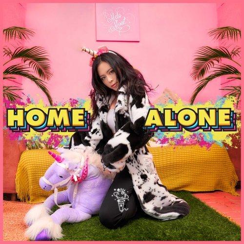 宅在家 (Home Alone)