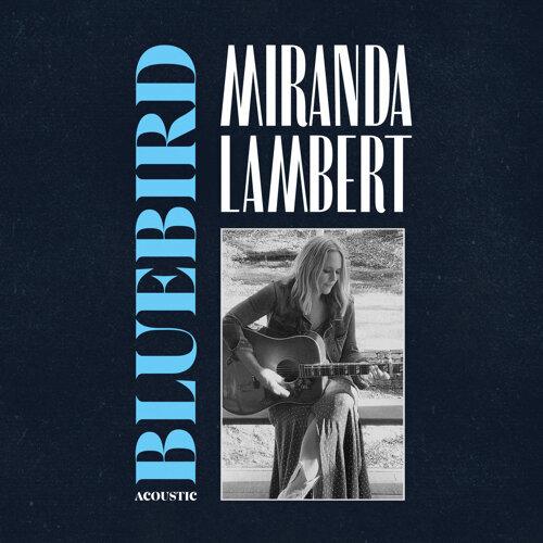 Bluebird - Acoustic