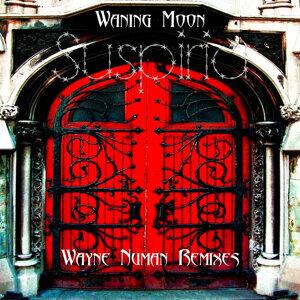 Suspiria (Wayne Numan Remixes)