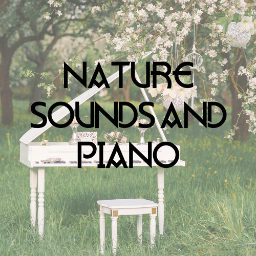 Nature Sounds Relaxation Music For Sleep Meditation Massage Therapy Spa Nature Sounds And Piano 15 Beautiful Melodies Created For Relaxation Meditation Sleep And Breathing Exercises Kkbox