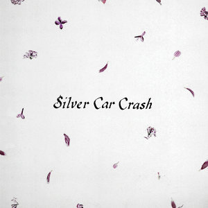 Silver Car Crash