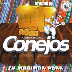 Tradición de 100 Años en Marimba Pura. Música de Guatemala para los Latinos