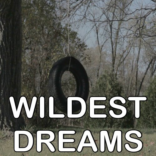 Wildest Dreams - Tribute to Taylor Swift