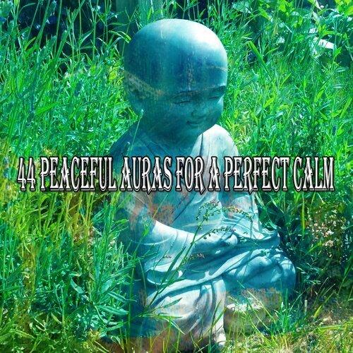 44 Peaceful Auras for a Perfect Calm