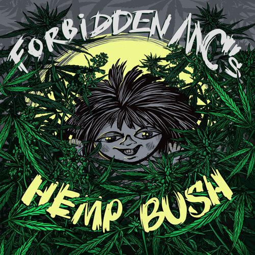 Hemp Bush